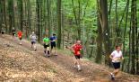 Impressionen Pfälzerwald-Marathon 2011