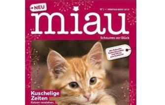 """""""Miau"""" am Start"""
