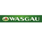 Hauptversammlung zum Geschäftsjahr 2018<br /><h5>WASGAU | Pressemeldung vom 5. Jun. 2019</h5>